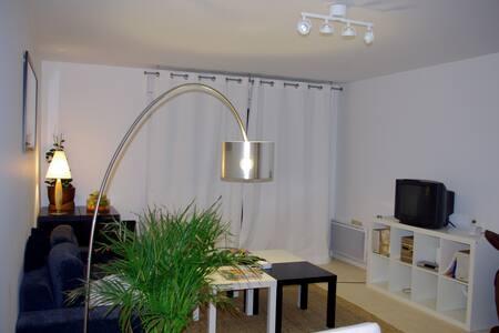 Chambre  dans appart calme - L'Haÿ-les-Roses - Lejlighed