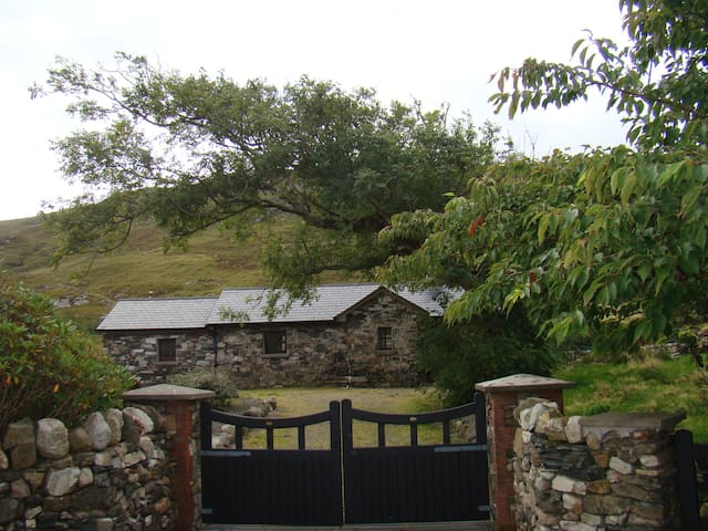 Gortrusheen Cottage - 戈爾韋 - 小屋