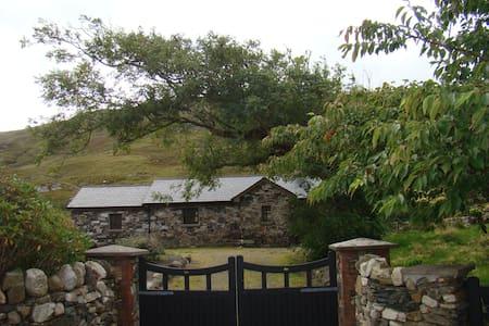 Gortrusheen Cottage - Galway - Stuga