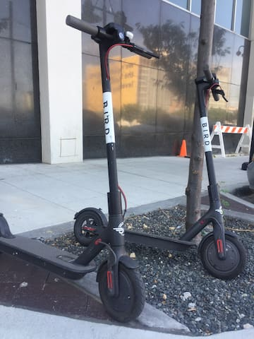 Tons of bikes and scooters around for instant mobility