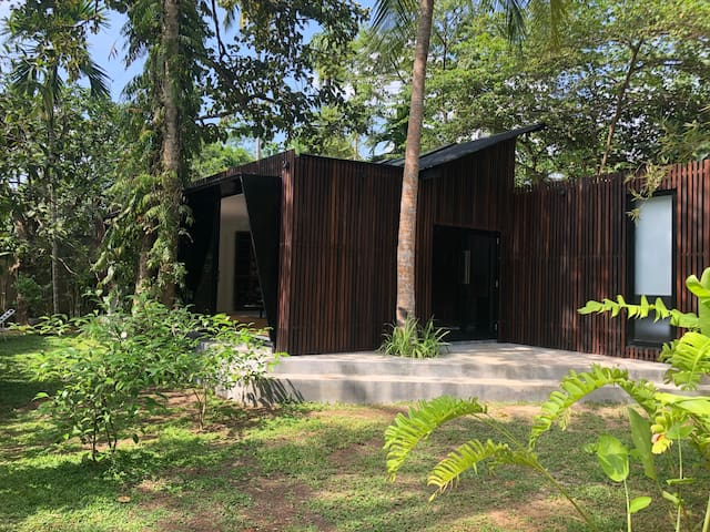Modernism in a secluded Jungle Garden