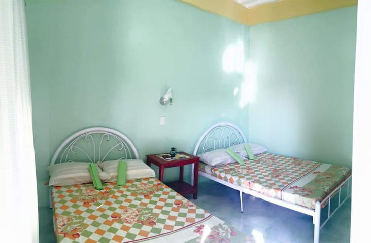 Iba,zambales family & pet friendly beach step room