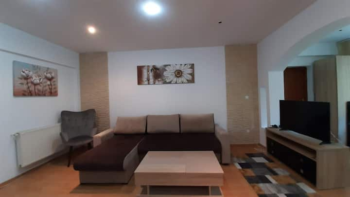 Apartament regim hotelier Monik Apartment.