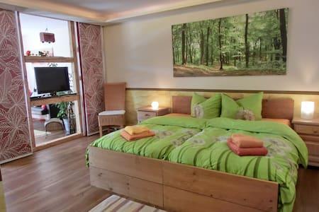 barrierefreie Ferienwohnung , Haustiere erlaubt - Lindenberg im Allgäu