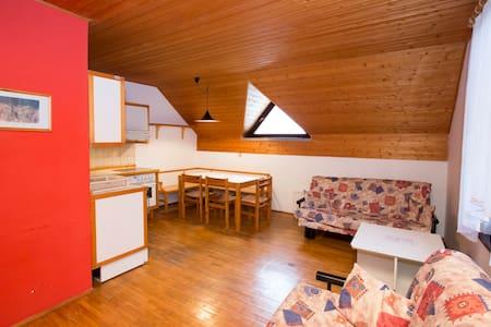 Apartment JEGLIC - Ukanc