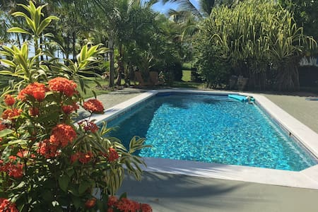 Casa Pamela-Beachfront 2 bedroom apt with pool/a/c