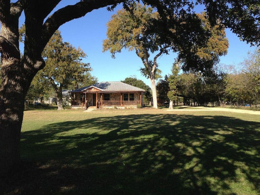 Front Lawn - Front lawn under one of the many large oak trees on the property