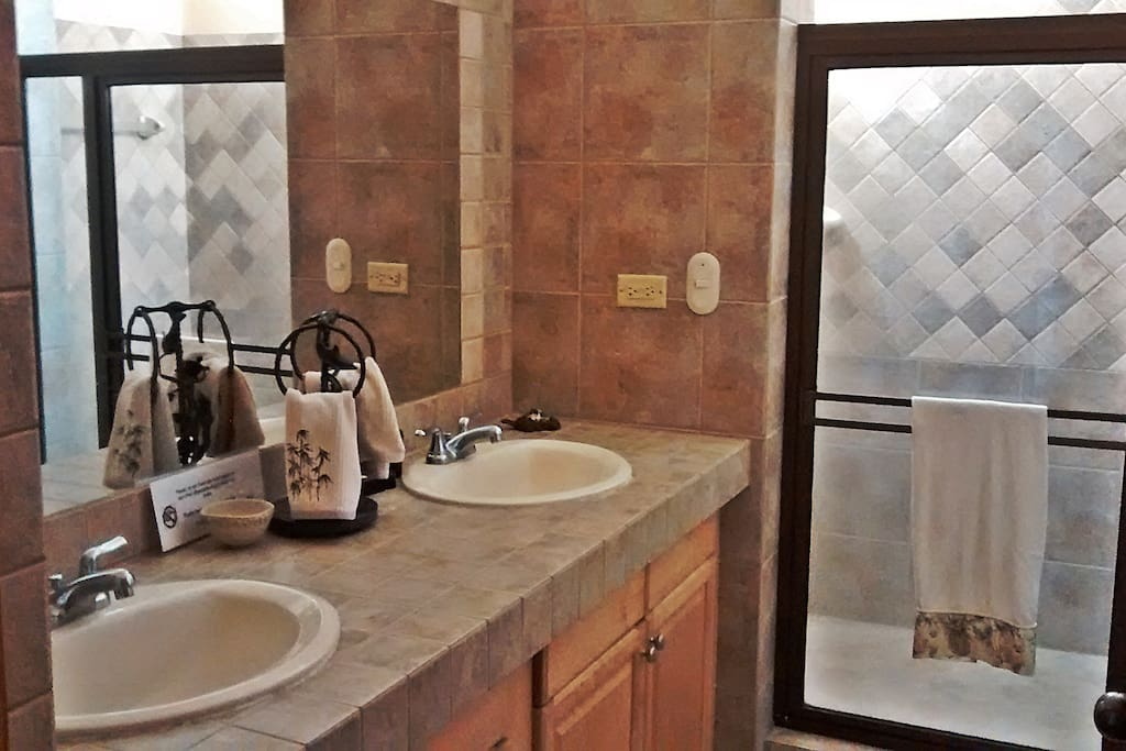 Bathroom with dual sinks and huge walk-in shower