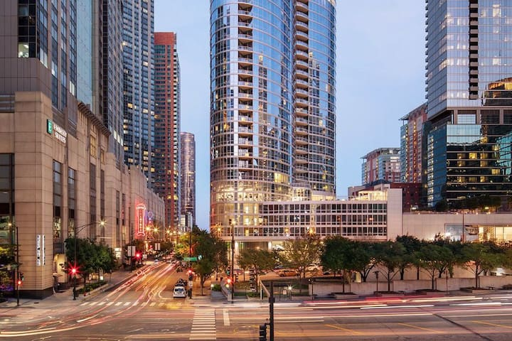 Luxury Apartment Central to Chicago's Very Best!