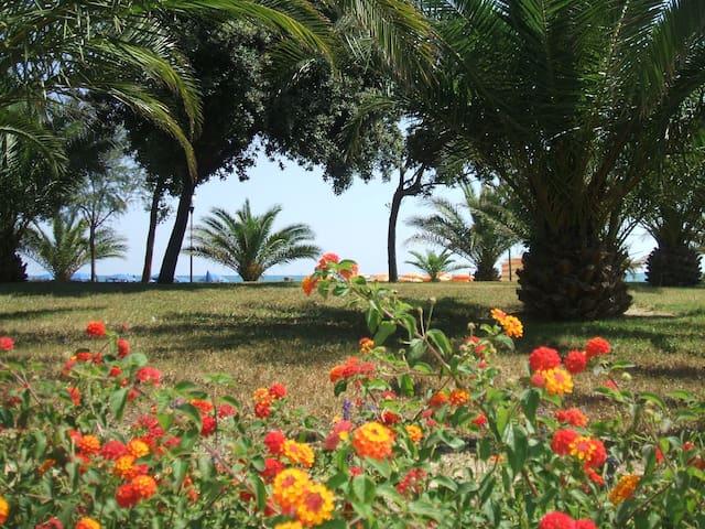 квартира на берегу Адриатического моря - Silvi - Apartment