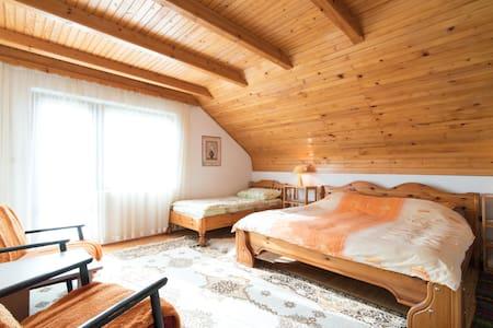 Guesthouse ŠADRVAN - Room No. 3