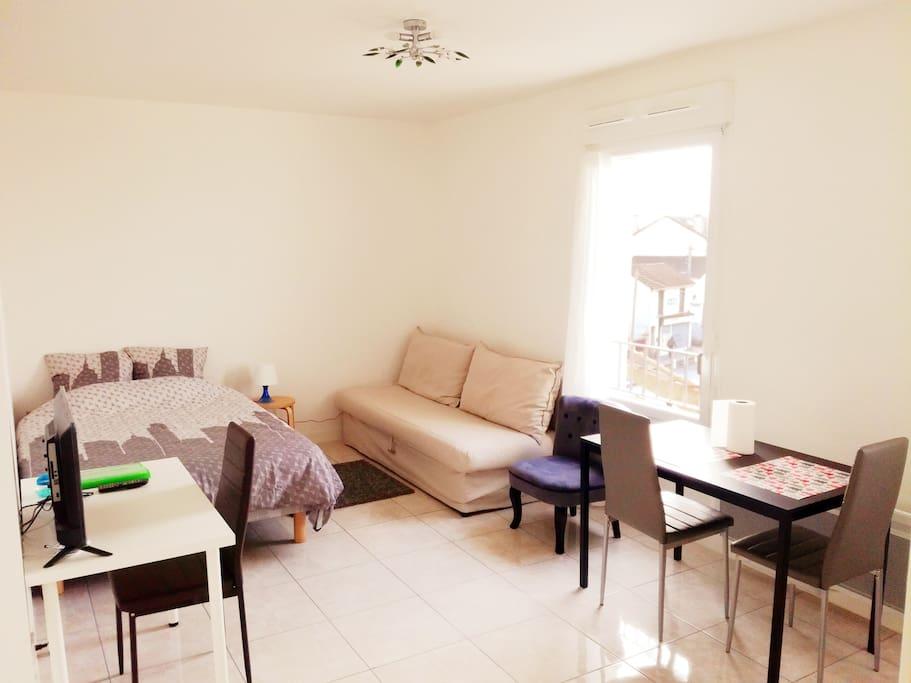 A Spacious and luminous room with 1 double bed and 1 sofa double bed. Une pièce lumineuse et spacieuse avec un lit double et un canapé convertible double couchage.