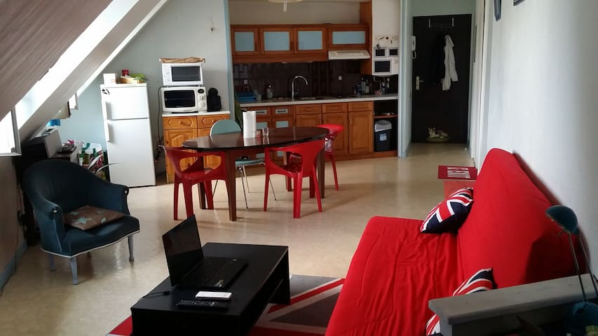 Jolie appartement au cœur de Tarbes - Tarbes - Leilighet
