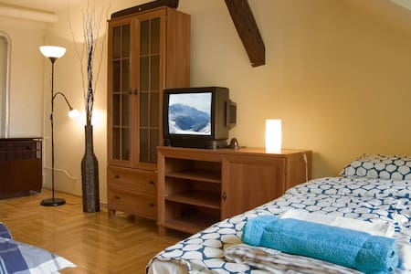 Nice penthouse in the heart of Budapest - 布达佩斯 - 公寓