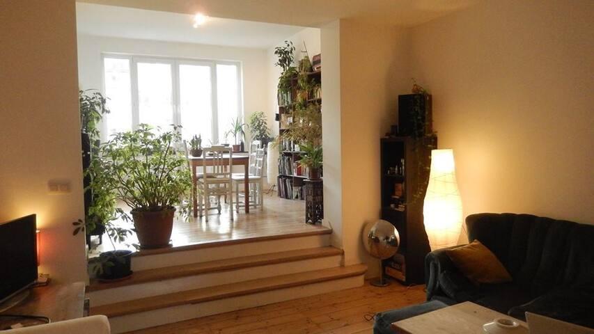 Bel appartement bruxellois - Schaerbeek - Apartment