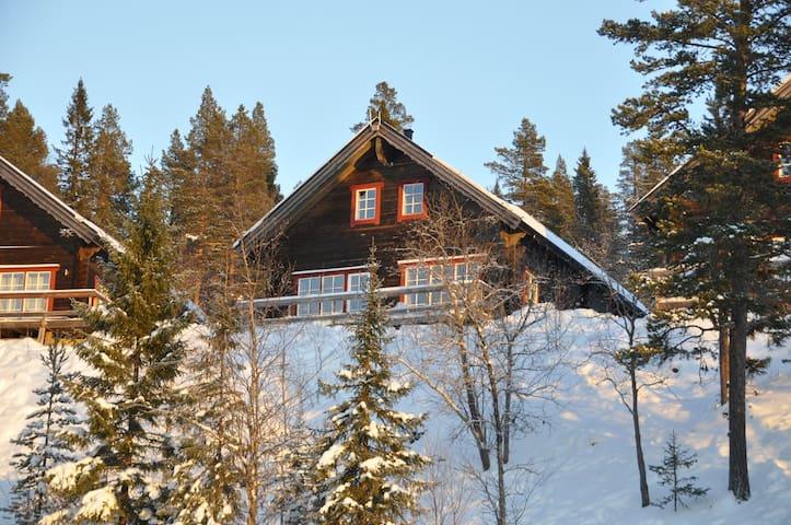 Fantastic house in Vemdalen - Härjedalen NV - Casa de campo