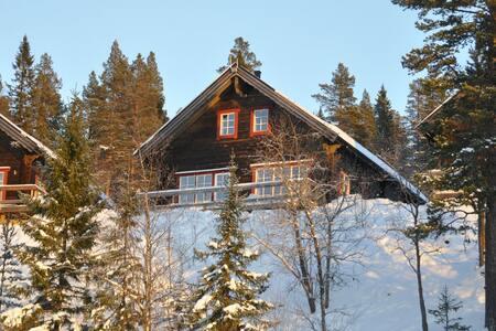 Fantastic house in Vemdalen - Härjedalen NV