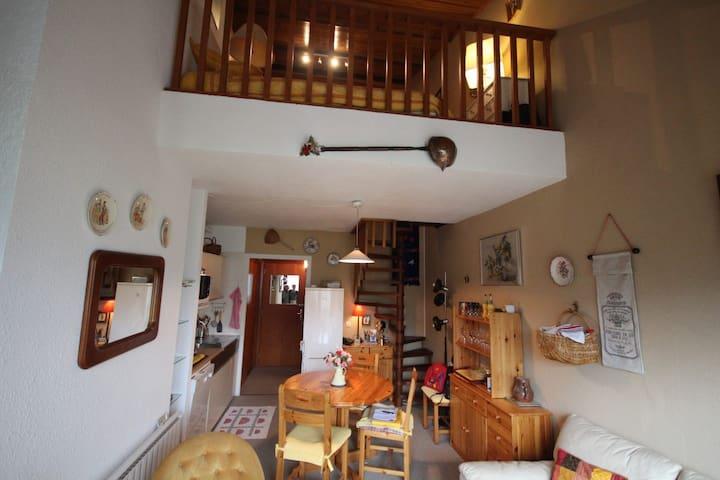 Bel appartement Gréolières - Gréolières - Apartamento
