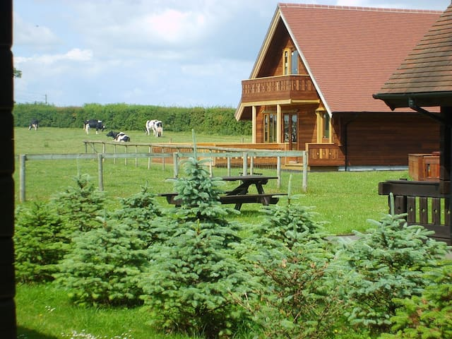 Superb chalet on working dairy farm in Dorset - Gillingham - Bungalo