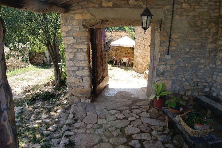 Habitació Montrebei