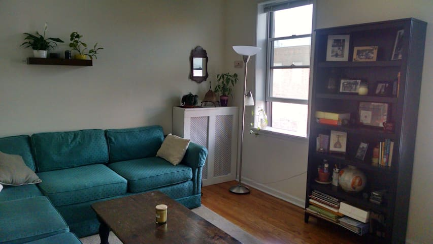 cozy one bedroom apartment apartments for rent in philadelphia