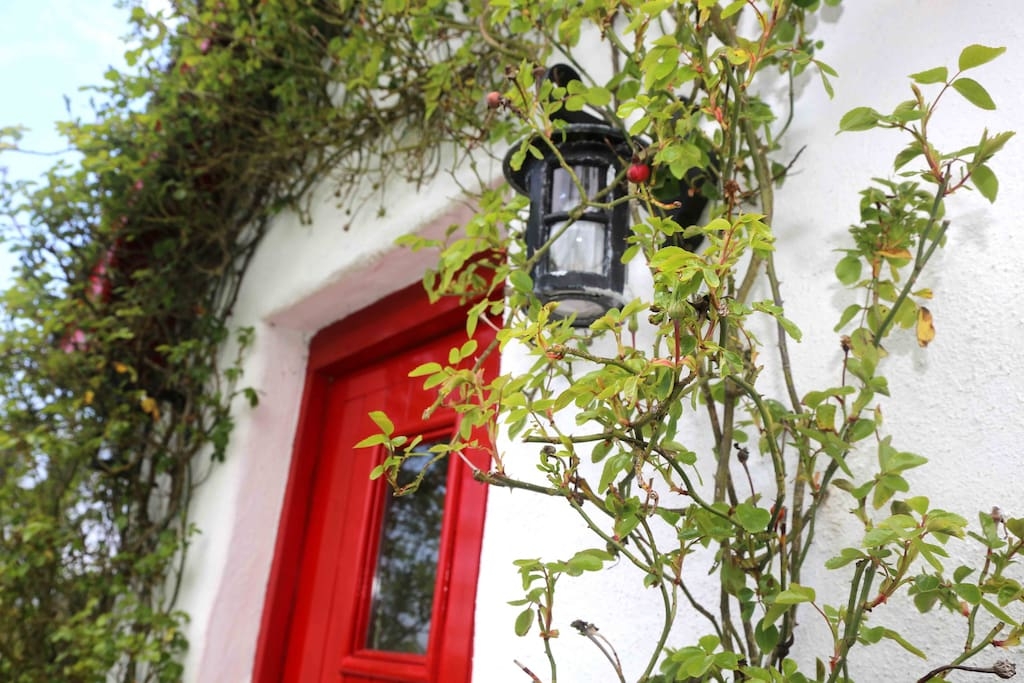 Old-fashioned hatched door and lantern to The Old Cotttage