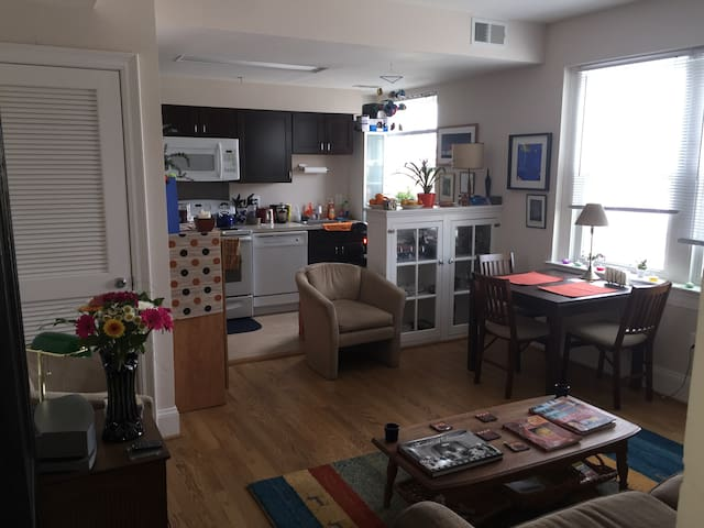 Holidays rent - Washington  - Apartment