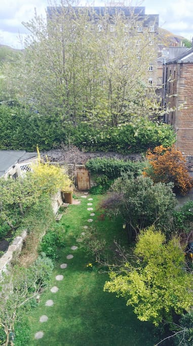 View of the garden from bedroom window.