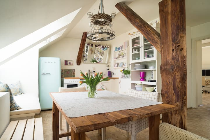 Country-style loft in the centre - Graz - Apartemen