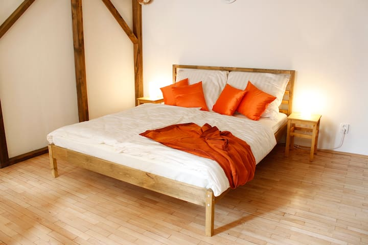 Cozy & Central apartment + free WiFi to Go - Praha