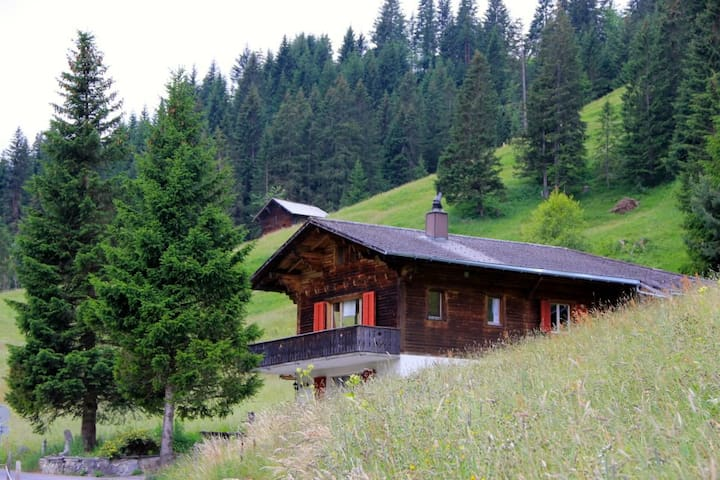 Chalet Ankebluemli, Adelboden - Adelboden - Lyxvåning