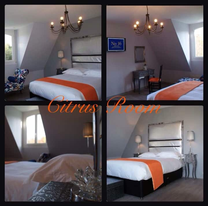 No:16 Chambres D'Hotes Boutique Hotel  Citrus Room