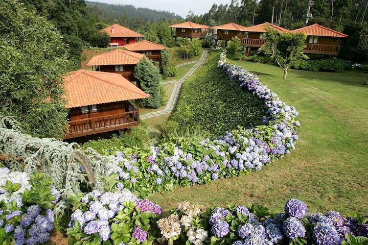 Abrigo de Montanha3 natureza e você - Santa Cruz - House
