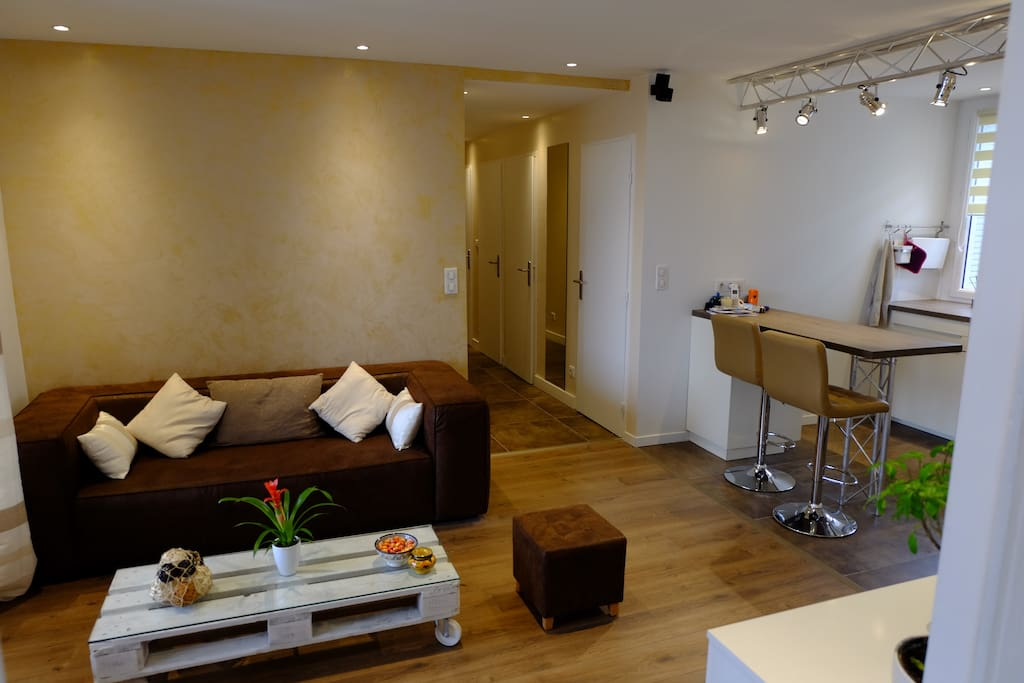 Joli appartement cosy et atypique apartments for rent for Location appartement atypique grenoble