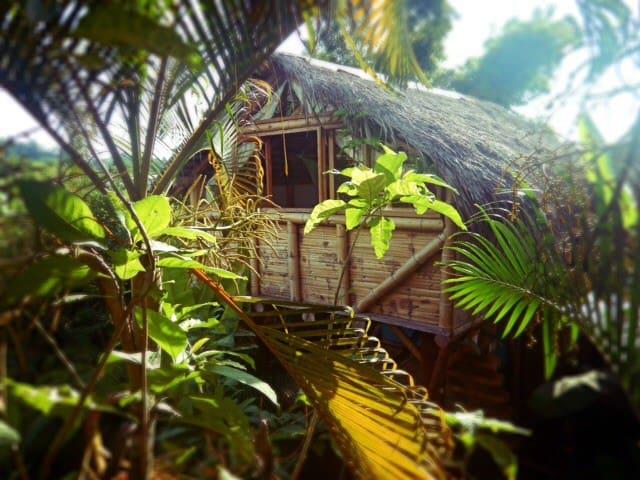 La Jungla Bungalows- Sulawesi - Mompiche - Dům na stromě