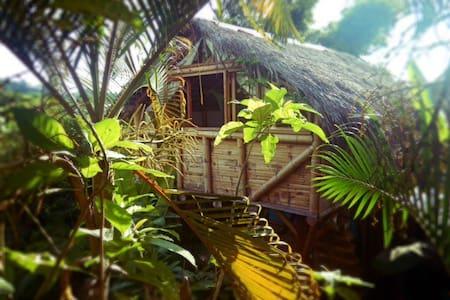 La Jungla Bungalows- Sulawesi - Mompiche