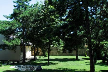 Solaris Garden