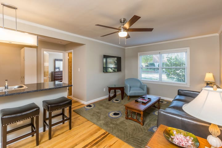 New Luxury 1BR Near Downtown and Hospital