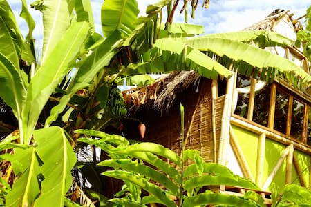 La Jungla Bungalows- Vanuatu - Mompiche - Hus i træerne