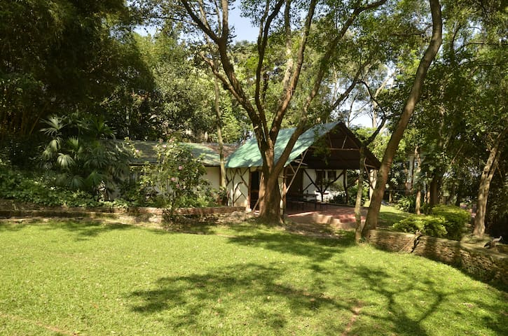 Kampala guest house in the woods
