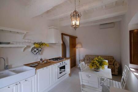 appartamento per 2+2 ospiti - Collesalvetti