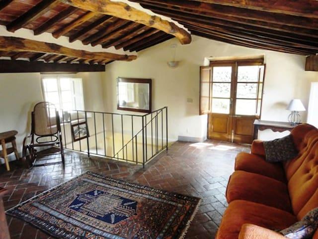 Pretty Tuscan cottage near Lucca - Borgo a Mozzano, Lucca