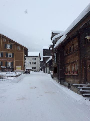 Historische Wohnung - Glarus Süd - Appartement