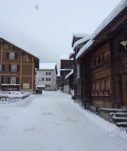 Historische Wohnung - Glarus Süd - 公寓