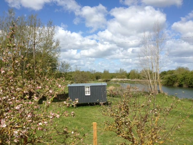 Swans view shepherds hut - Newbridge - Capanna