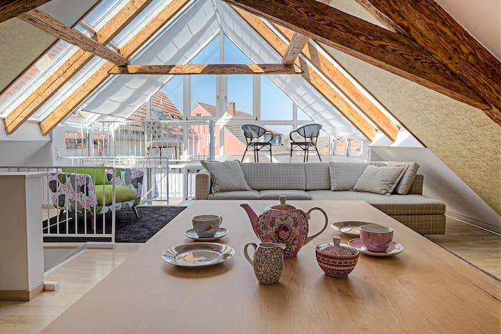 Top MAIN-Loft mit 60qm Dachterrasse - Haßfurt - ลอฟท์
