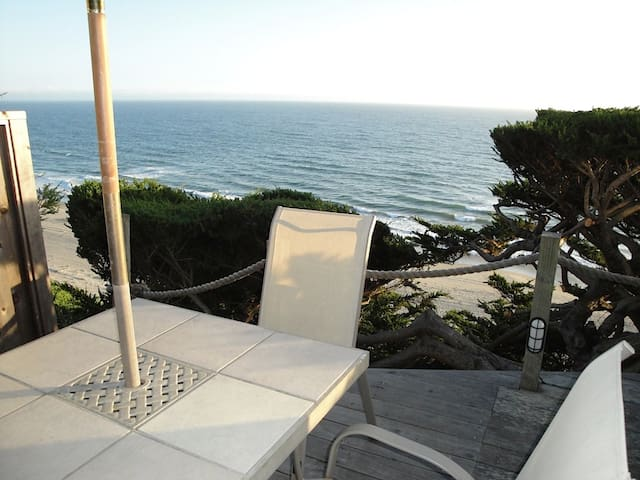perfect place to enjoy breakfast, watch the sunset, and spot dolphins!