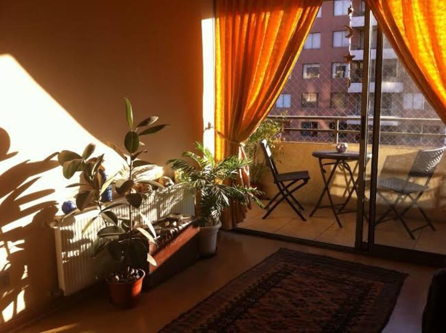 La calidez del color y de las plantas