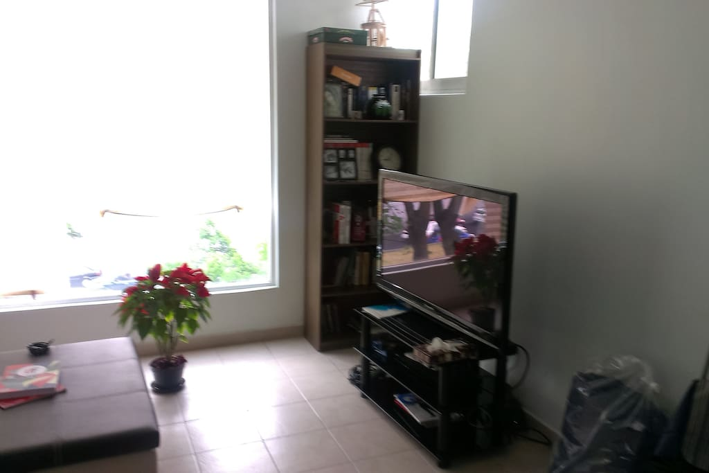 living room (2nd pic)