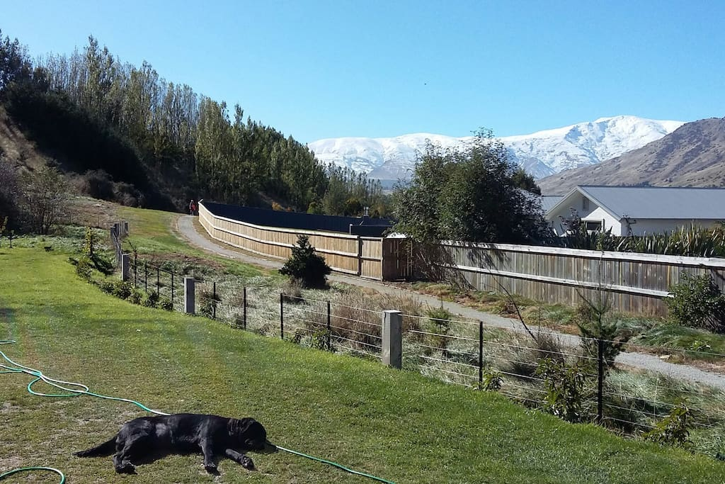 Looking down the property to the Crown Range and Cardrona.